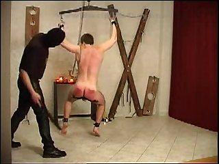 Discipline for vilem